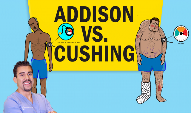 Addison's vs. Cushing's NCLEX™ Review